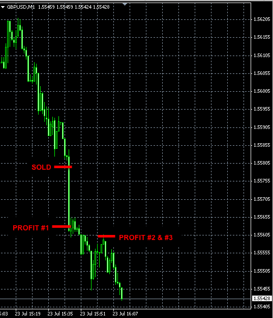Best forex trader to copy