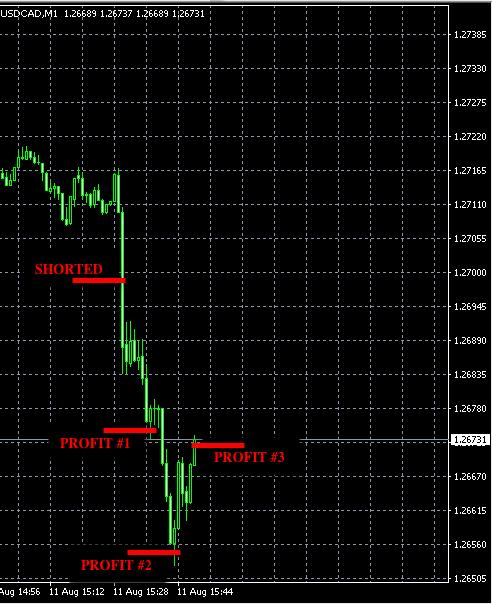 best forex signals aug11