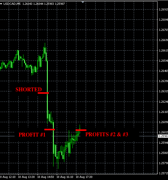 best forex signals aug18